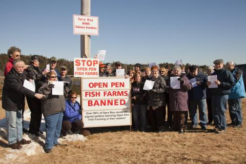 Nova Scotia: Eastern Shore Residents Celebrate Province's Refusal to Grant New Open Pen Salmon Farm License in Shoal Bay