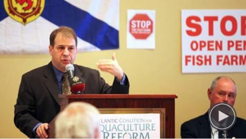 Coalition for Aquaculture Reform