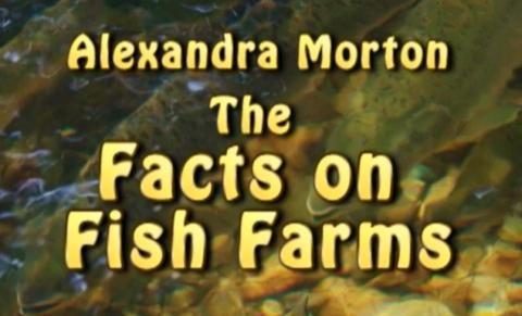 The Facts On Fish Farms
