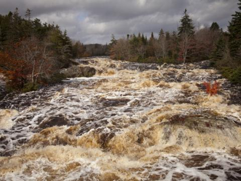 Raging water of the West River