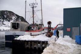 CFIA orders ISA infected salmon destroyed