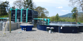 Report on Closed Containment Aquaculture